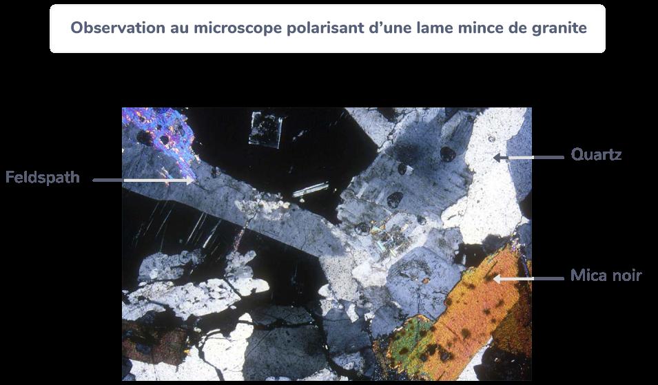 définition composition granite croûte continentale