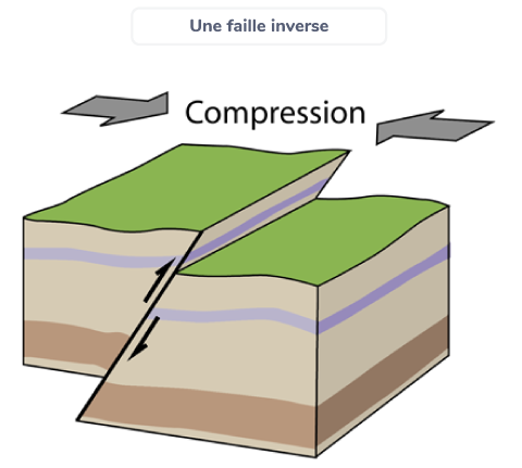 formation pli faille inverse effet forces compression