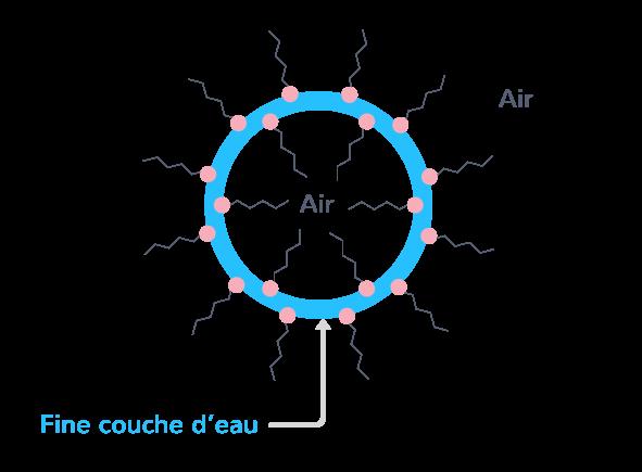 tensioactifs responsables mousse formée mélange eau savon