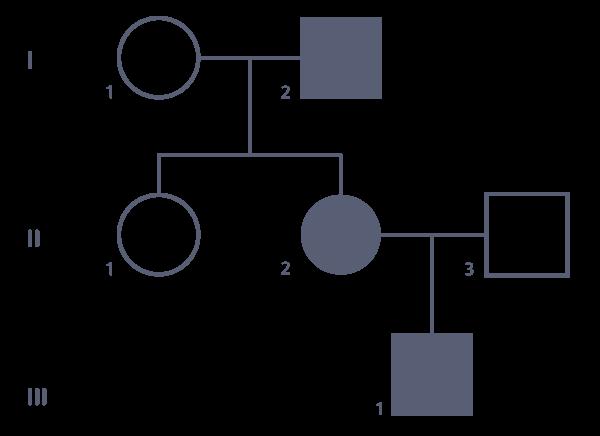 arbre généalogique mode transmission maladie génotype