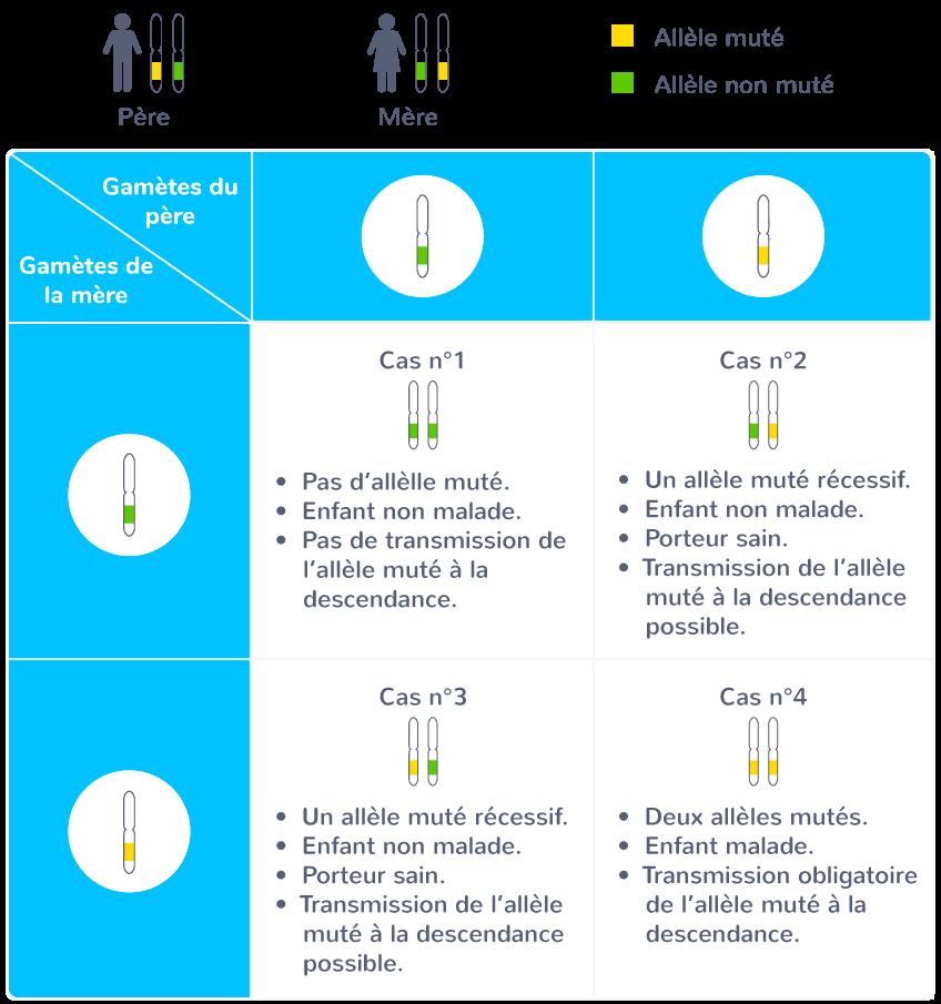 transmission mode autosomique récessif