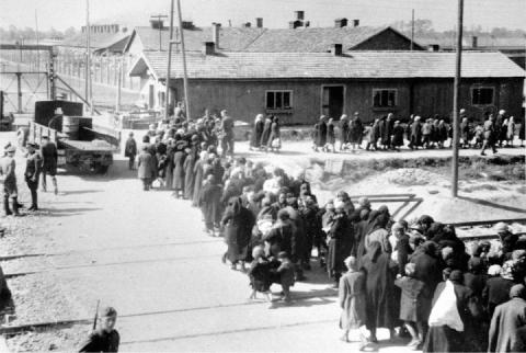 Juifs Tsiganes Auschwitz-Birkenau chambre à gaz