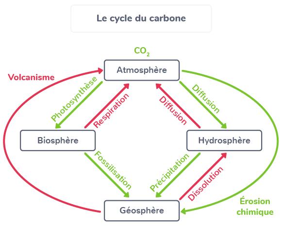 écosystèmes échanges permanents environnement proche
