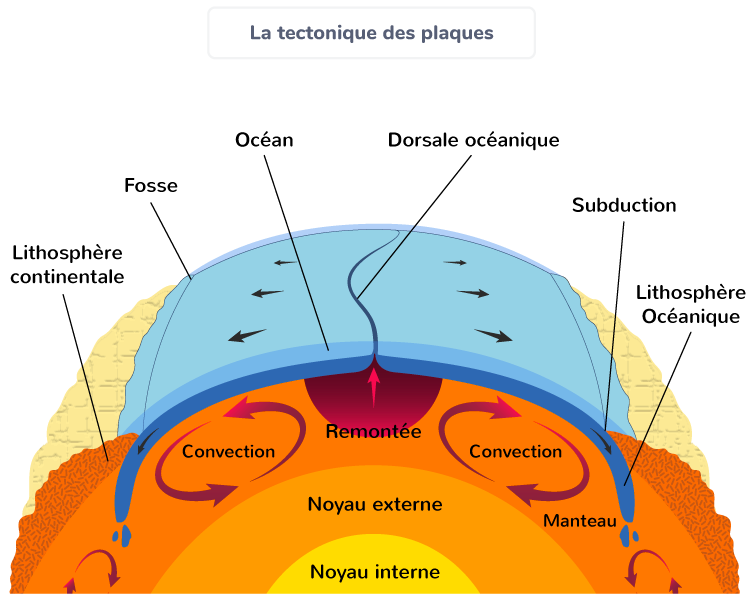 tectonique plaques mouvements convergence divergence