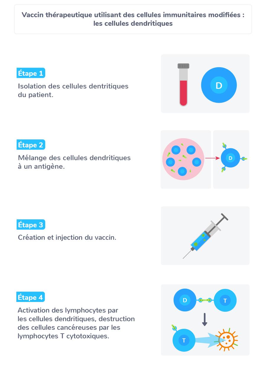 vaccin cellules immunitaires modifiées facilitant action système immunitaire