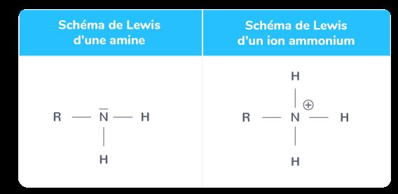 Schéma de Lewis d'une amine et d'un ion ammonium