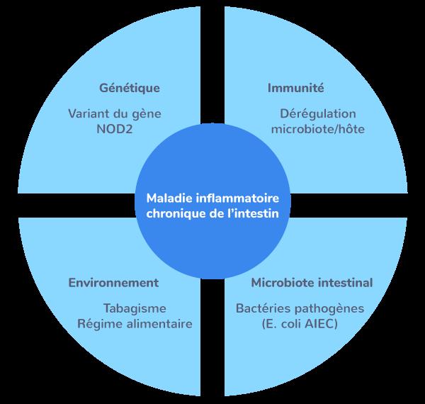 déséquilibre microbiote pathologies