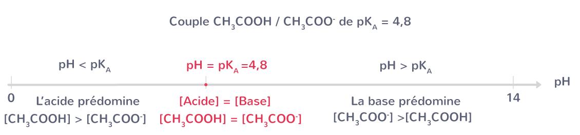 Diagramme de prédominance du couple acide éthanoïque/ion éthanoate