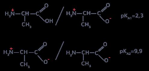 La Force Des Acides Et Des Bases En Solution Aqueuse Tle Cours Physique Chimie Kartable