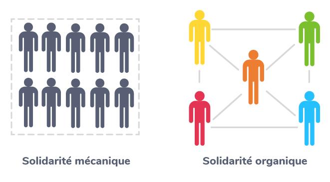 solidarité mécanique solidarité organique sociologue Émile Durkheim