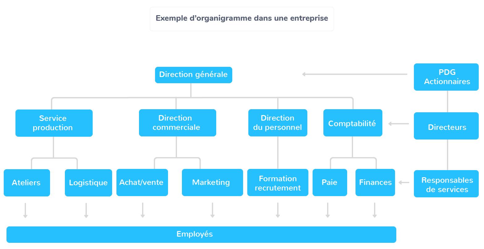hiérarchie entreprise