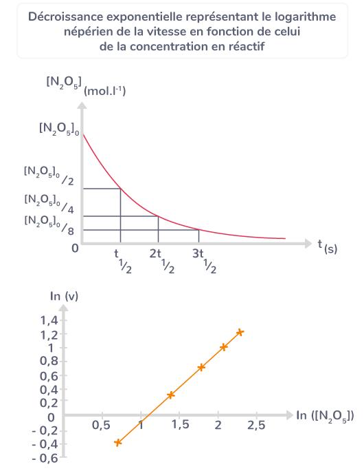 propriétés réaction d'ordre 1