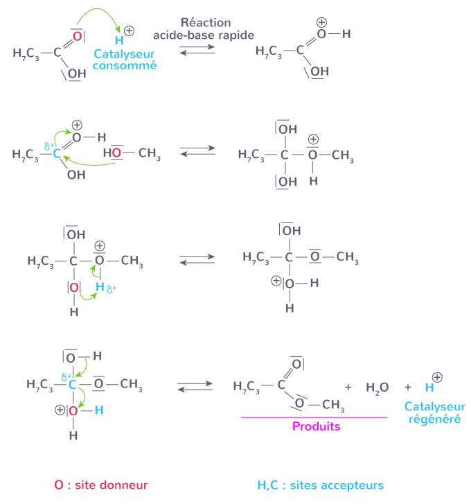effet catalyseur mécanisme réactionnel