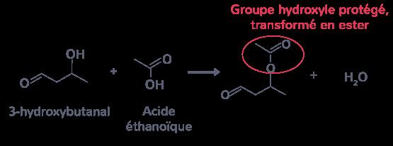 protéger groupe hydroxyle transformer ester réagir avec acide carboxylique acide éthanoïque