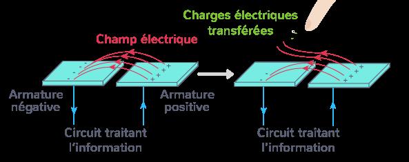 capteurs tactiles capacitifs verre condensateur écran
