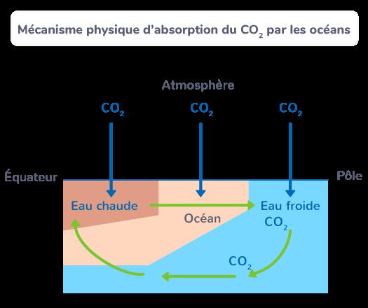 Mécanisme physique d'absorption du CO2 par les océans