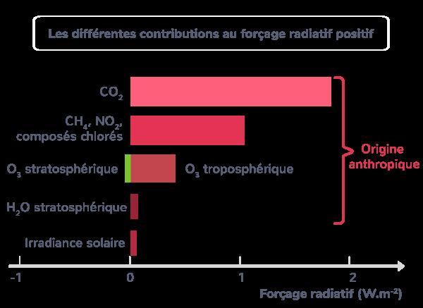 Les différentes contributions au forçage radiatif positif