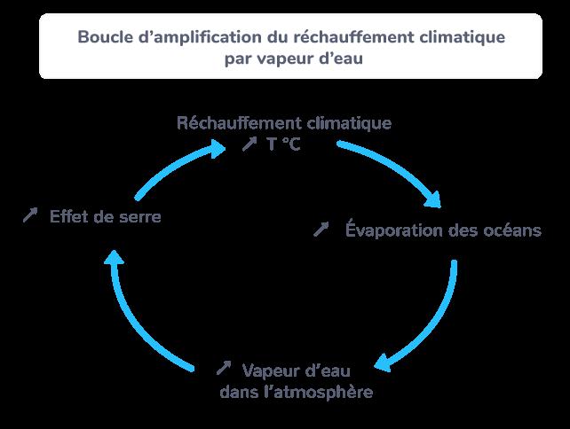 Boucle d'amplification du réchauffement climatique par la vapeur d'eau