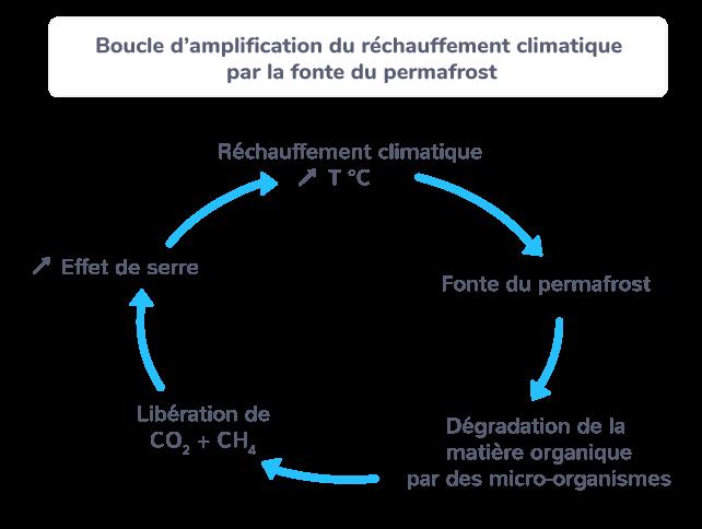 Boucle d'amplification du réchauffement climatique par la fonte du permafrost