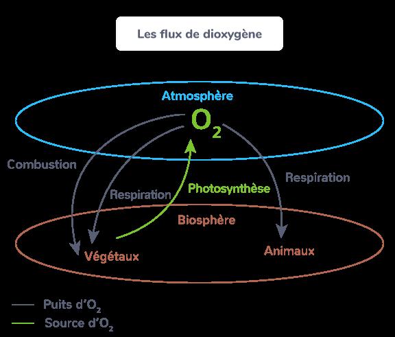 flux de dioxygène
