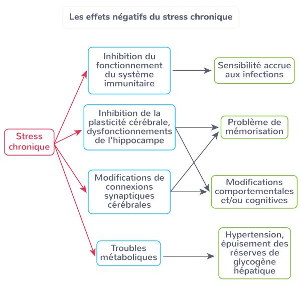 effets stress chronique comportement