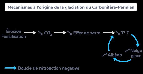 Mécanismes à l'origine de la glaciation du Carbonifère-Permien.
