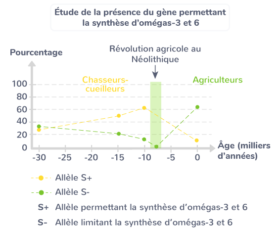 Étude de la présence du gène permettant la synthèse d'omégas 3 et 6