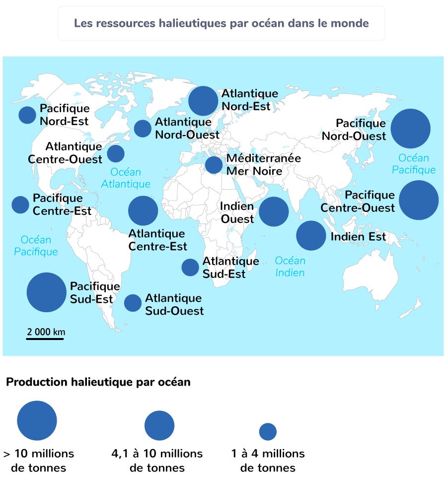 Les ressources halieutiques par océan dans le monde