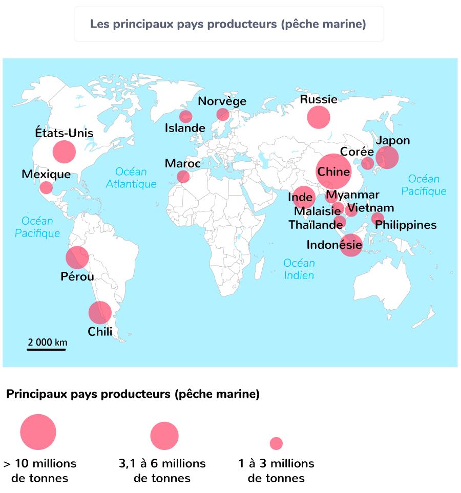 Les principaux pays producteurs (pêche marine)