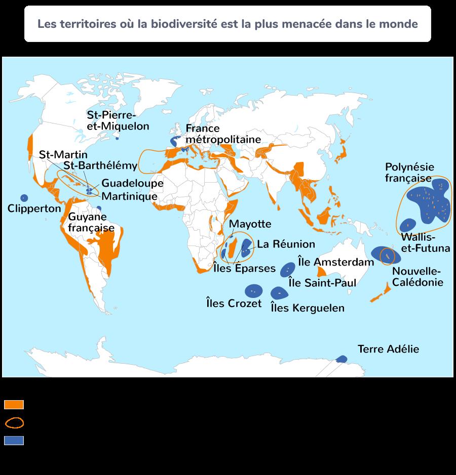 Les territoires où la biodiversité est la plus menacée dans le monde