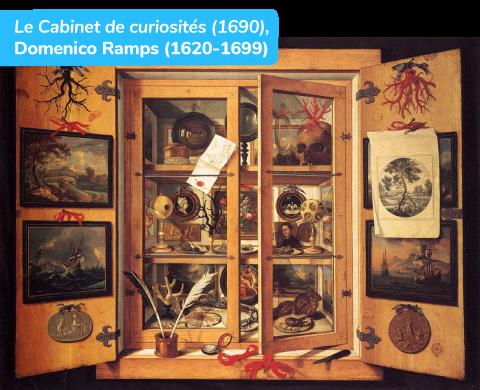patrimonialisation des traces du passé cabinet de curiosités