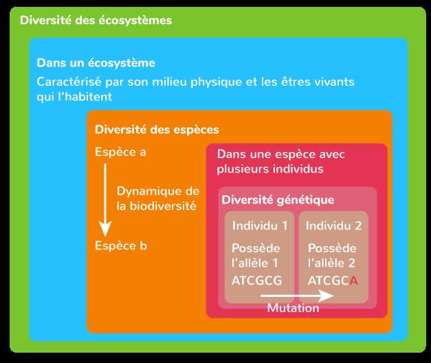 échelles biodiversité