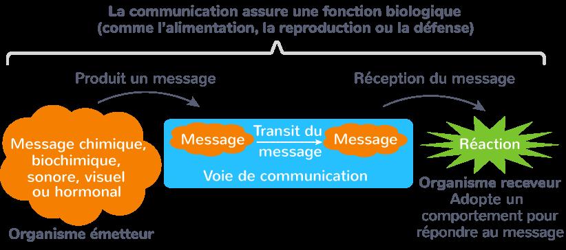 communication intra-spécifique sélection sexuelle