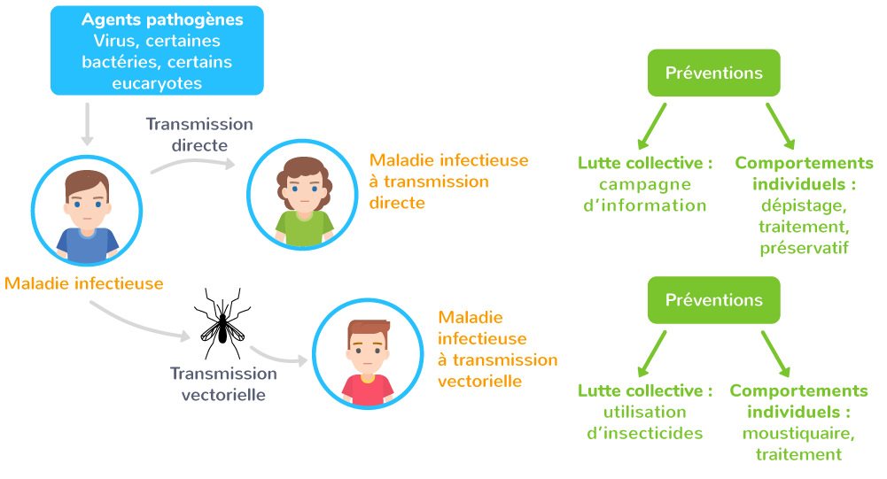 agents pathogènes maladies vectorielles