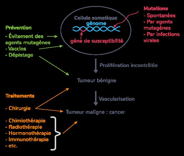 altération génome cancérisation
