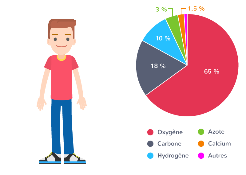 Composition chimique moyenne d'un être humain