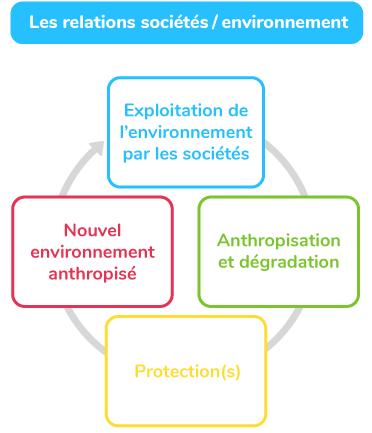 relations entre sociétés et environnement