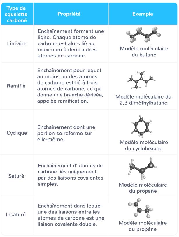 squelette carboné molécule organique différentes natures